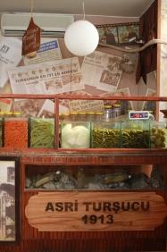 Asri Turşucu