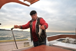 50 yıllık balık tutma tecrübesi, lüfere olan bakışlarını değiştirmemiş.